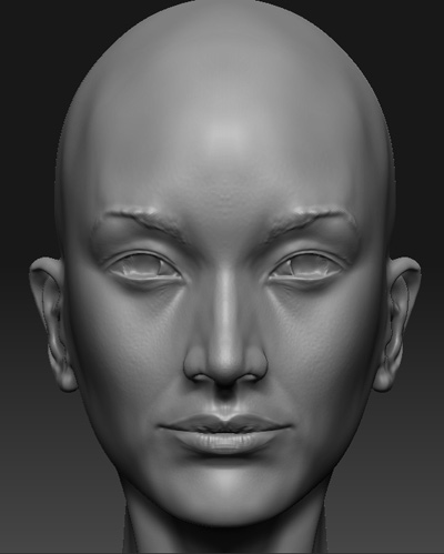 Female-Head_2.jpg