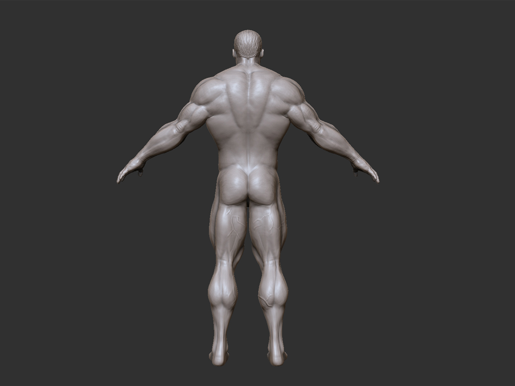 he-man_body_back_01.jpg
