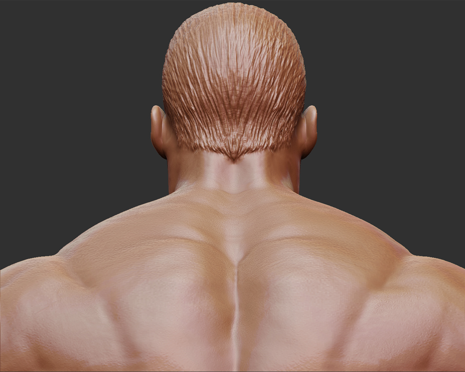 he-man_head_back_01.jpg
