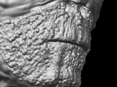 mummy_mouthDetail4-web.jpg
