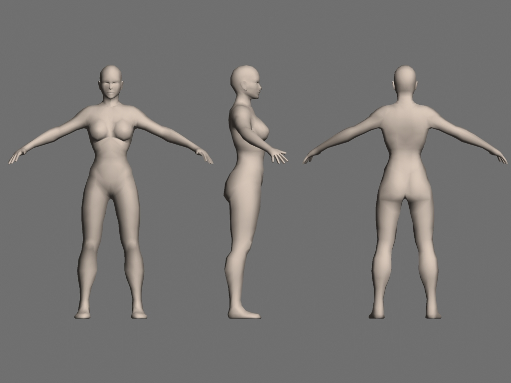female proportions.jpg