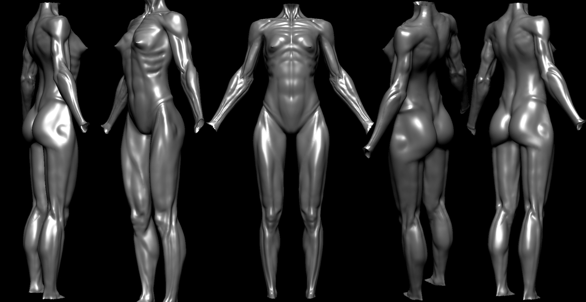 Female Anatomy Ecorche Wip (Nudity)