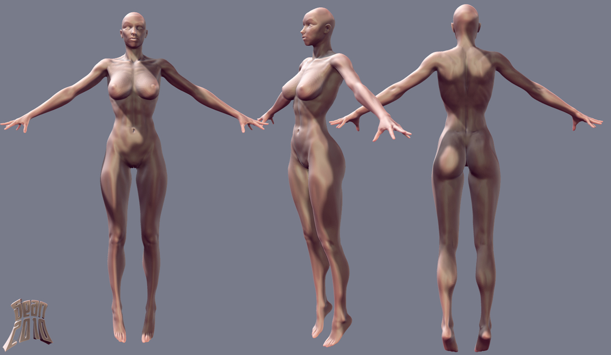 Character Modeling In Blender Pdf : Sean s sketches anatomical nudity
