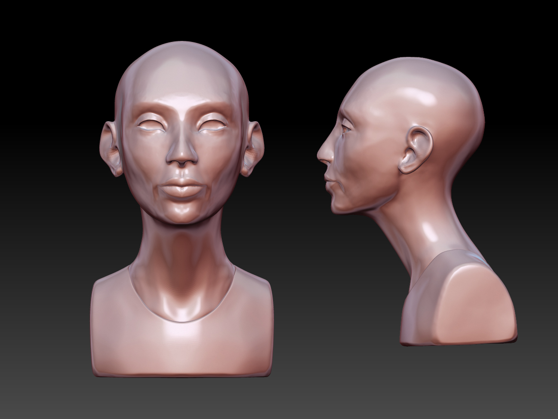HeadSculptWIP2_may2011.jpg