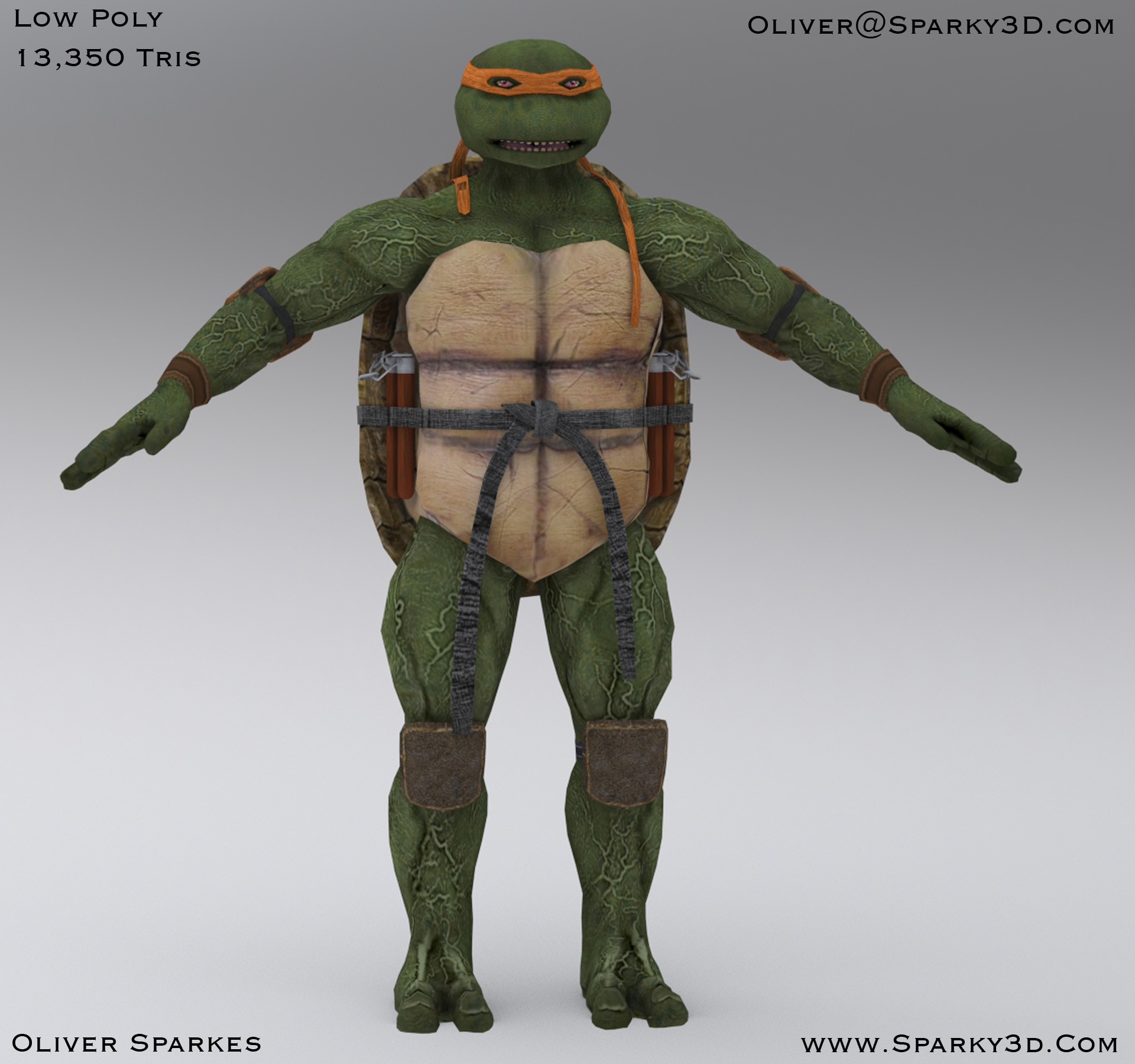 beauty_shot_turtle_low_poly.jpg