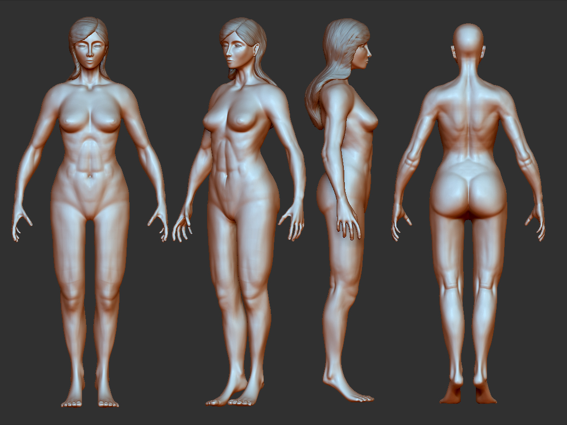 Female Body Anatomy Help