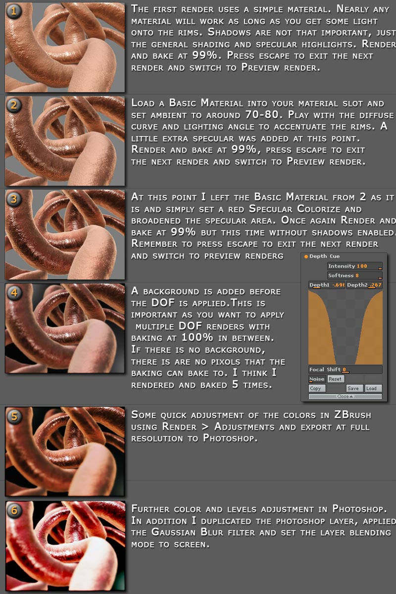 Intestines-step-by-step.jpg