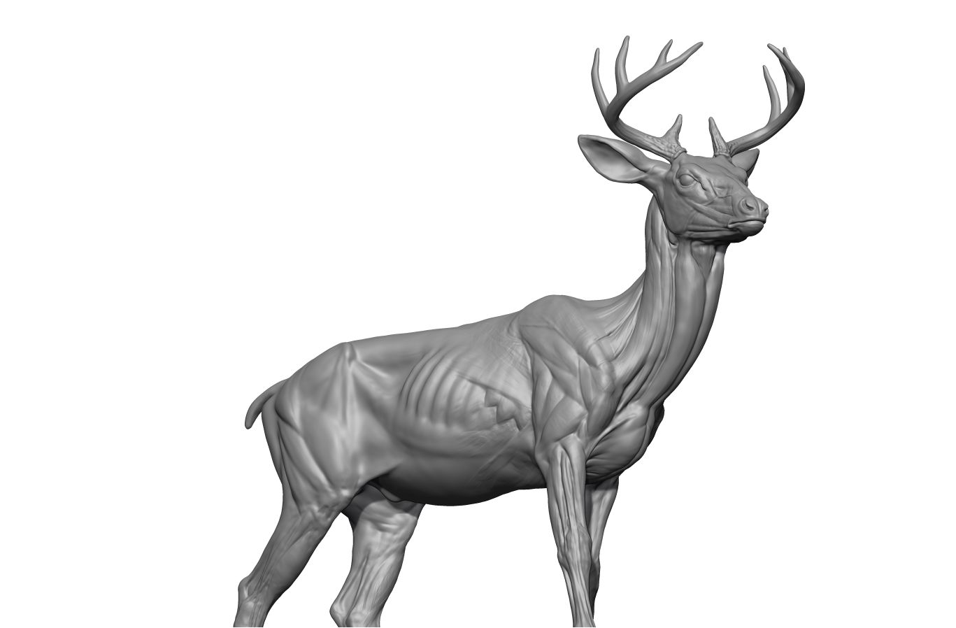 WEREWOLF THING and more