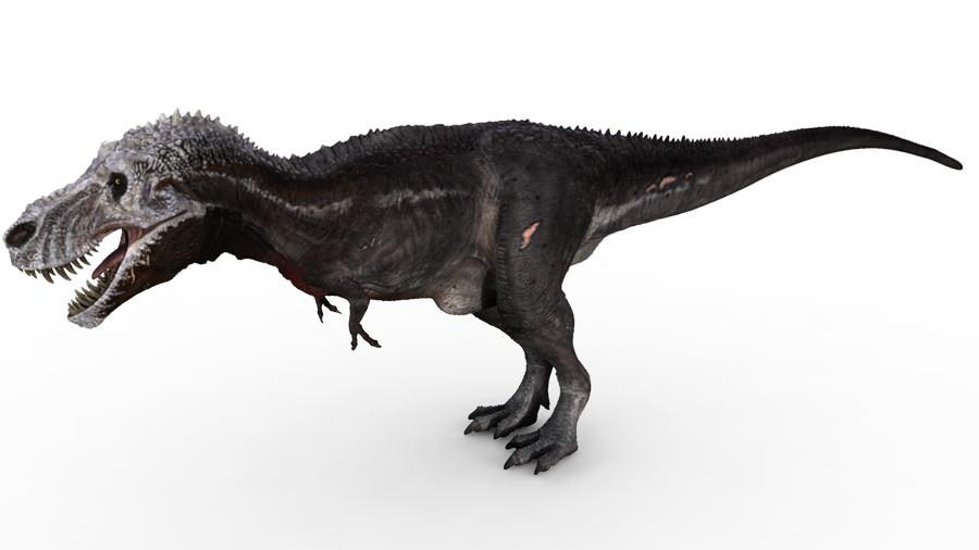 dinosaur revolution ty...