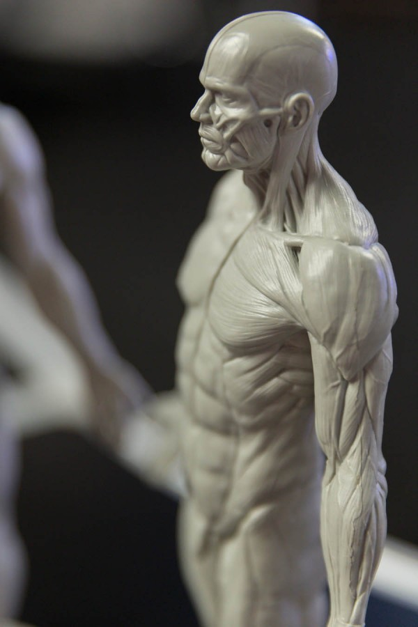 3dtotals Anatomical Figure Was The Pixologic Booth During Siggraph
