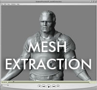 meshExtraction.jpg