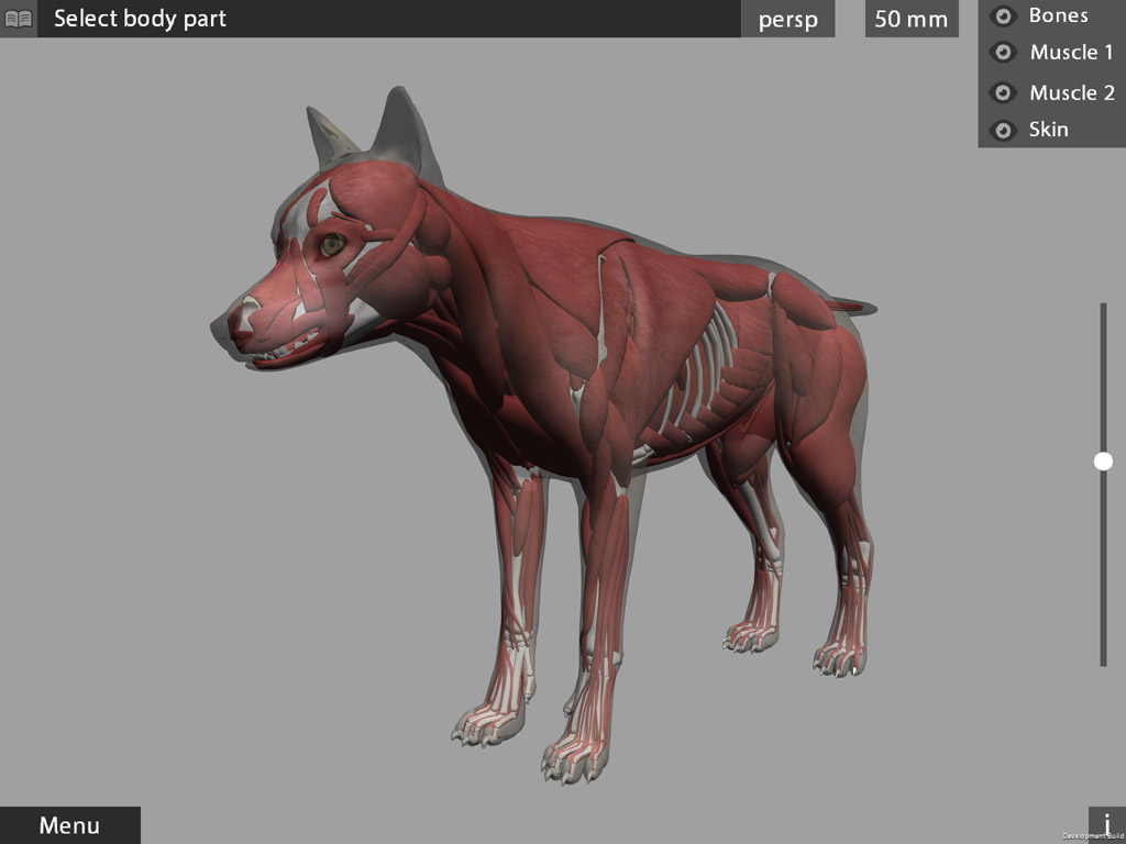 Animal Anatomy 3d App References