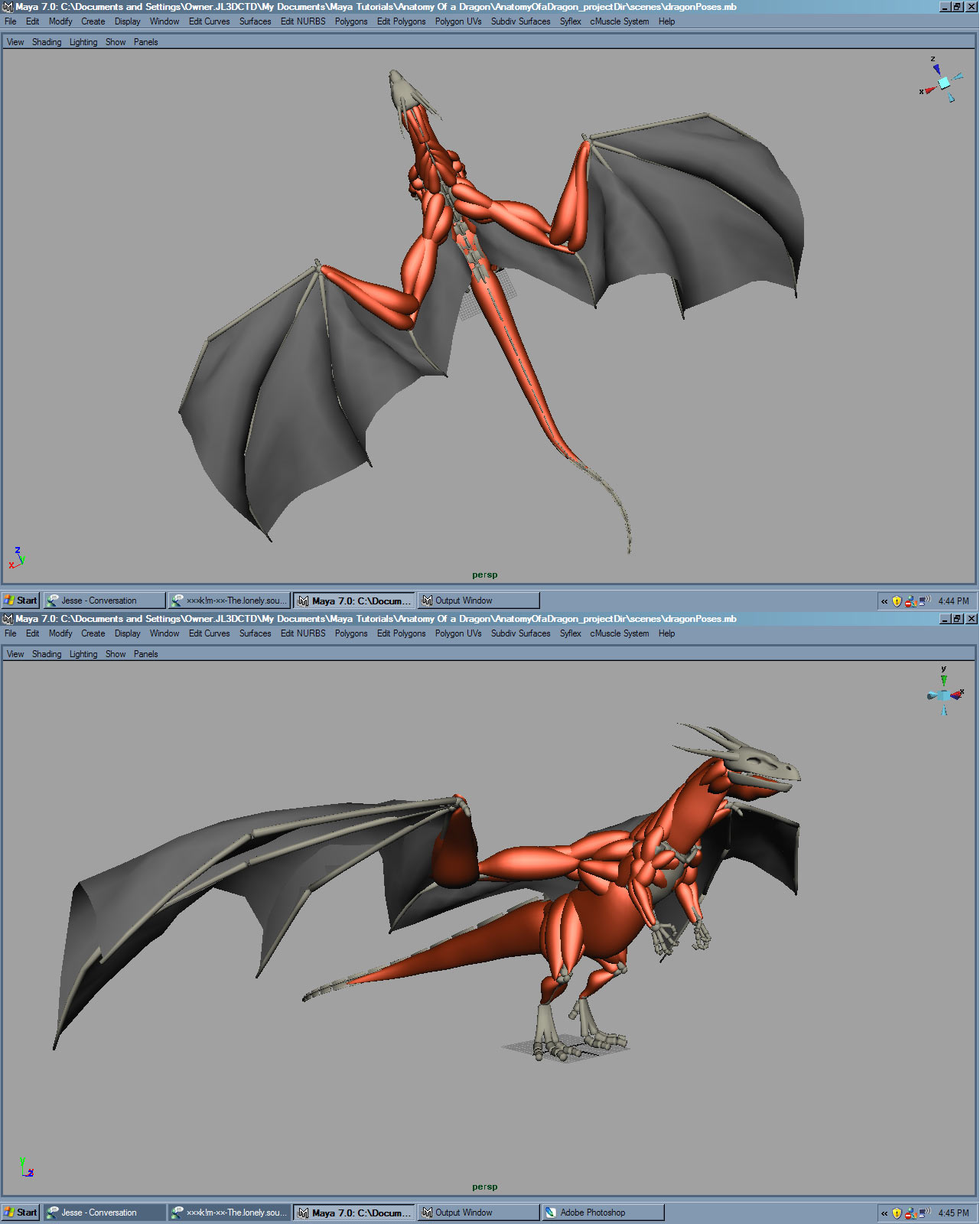 Anatomy Of A Dragon Wip For Later Dvd Training
