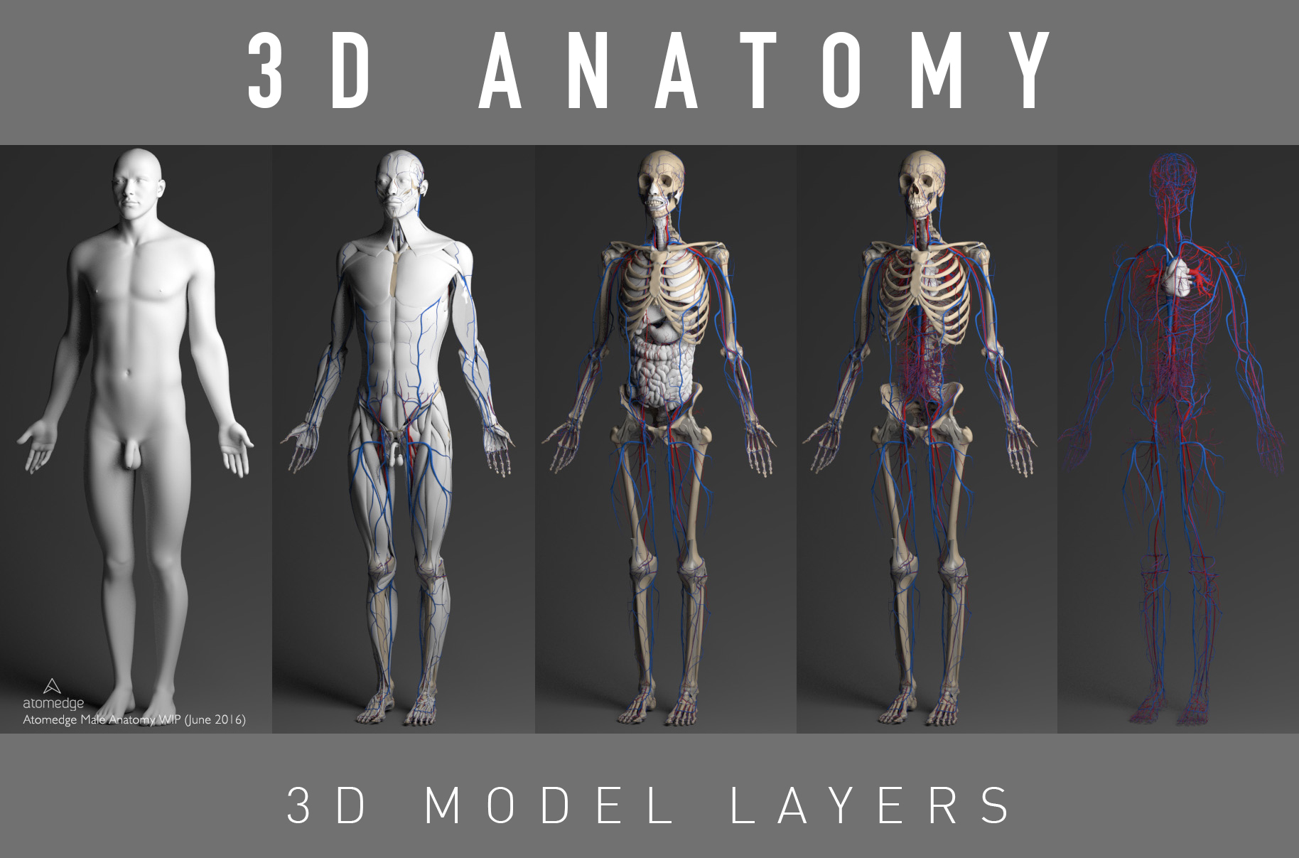 3D Artist (Modeling & Texturing) FULL TIME JOB - Cape Town