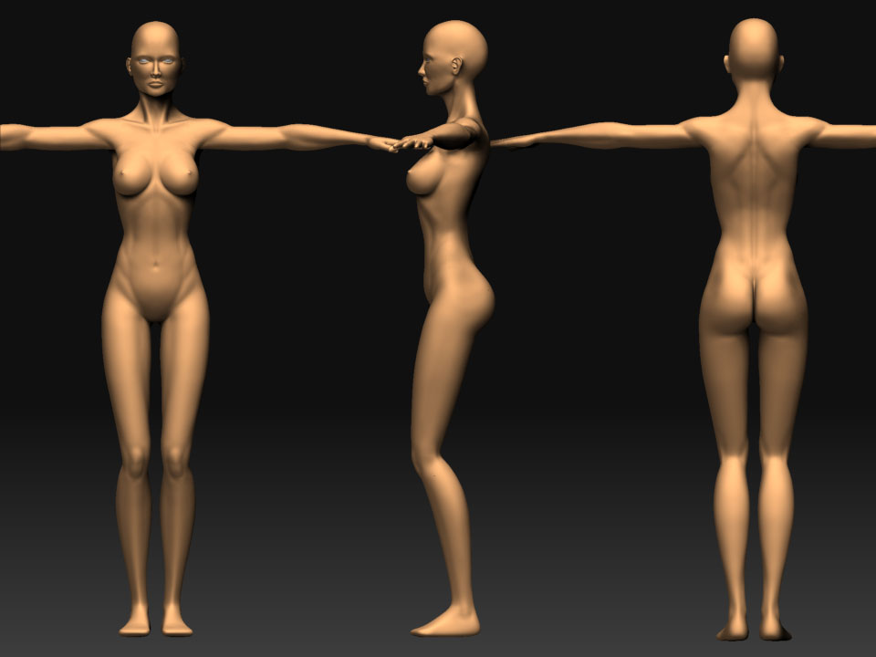Free female base mesh (nudity)