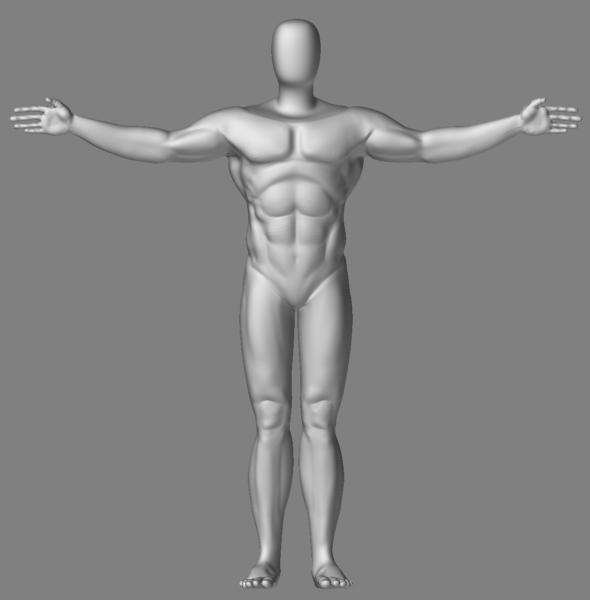 male figure study wip