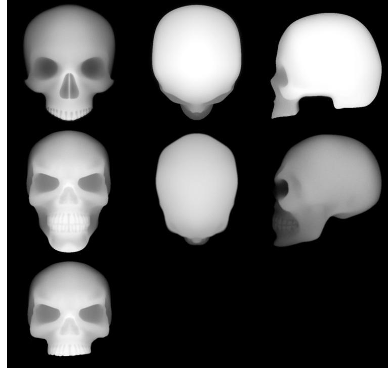 Skull Alpha Brushes download
