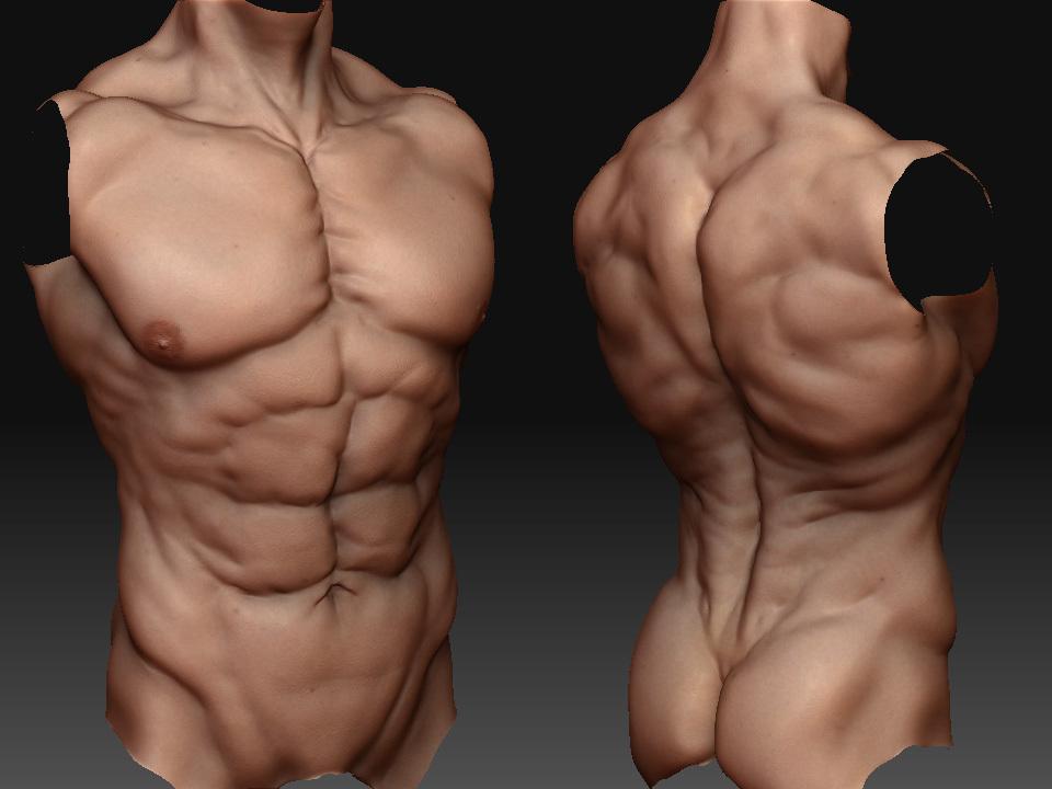 YA anatomy study & alien head