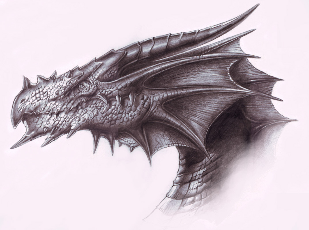 Chinese Dragon Head Tattoo - Dragon Head Images, Pictures ...